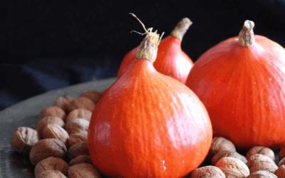 Pompoen: superfood van de koude grond